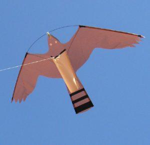 Hawk Kite -haukkajäljitelmäleija